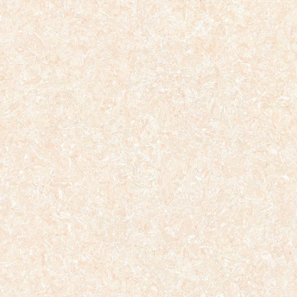 YV81601 郁金香