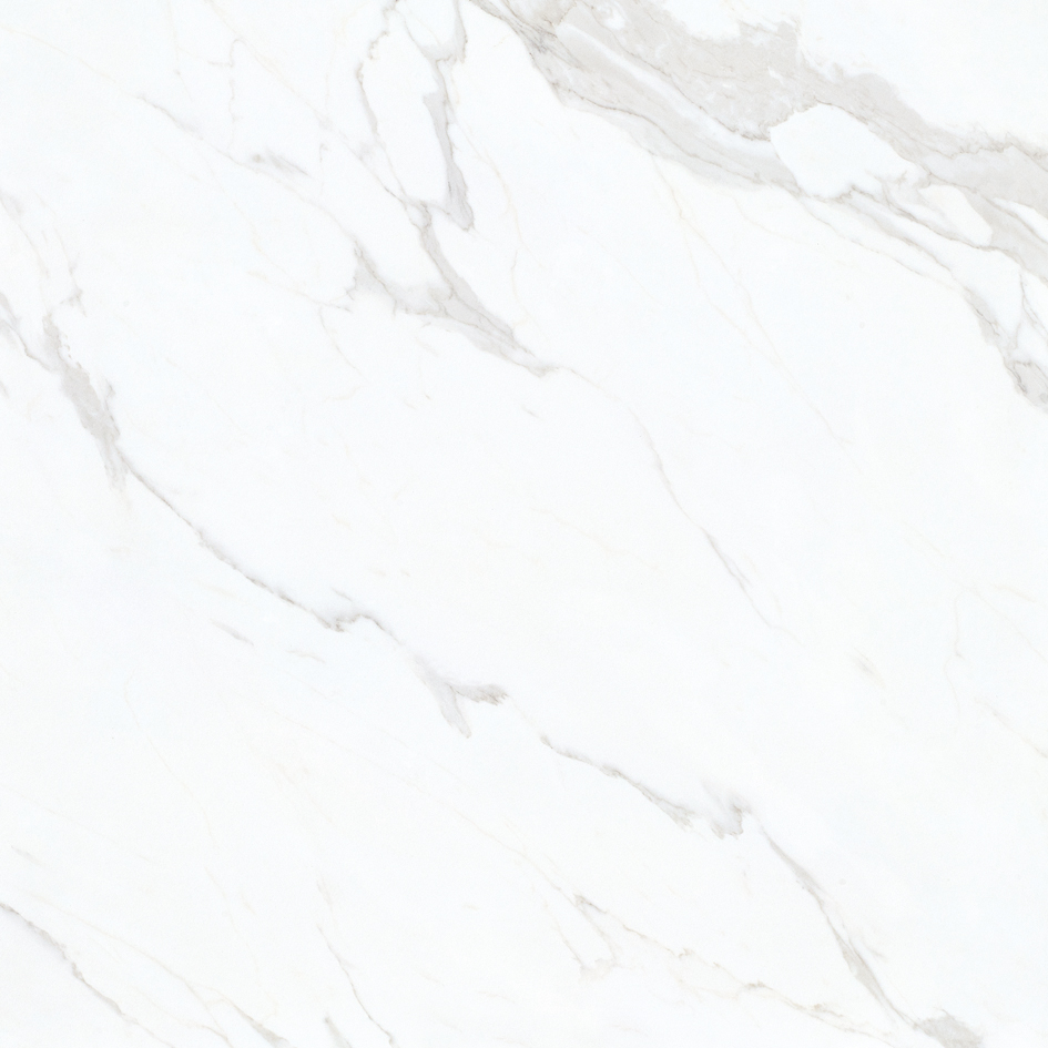 YHDG80005 鱼肚白
