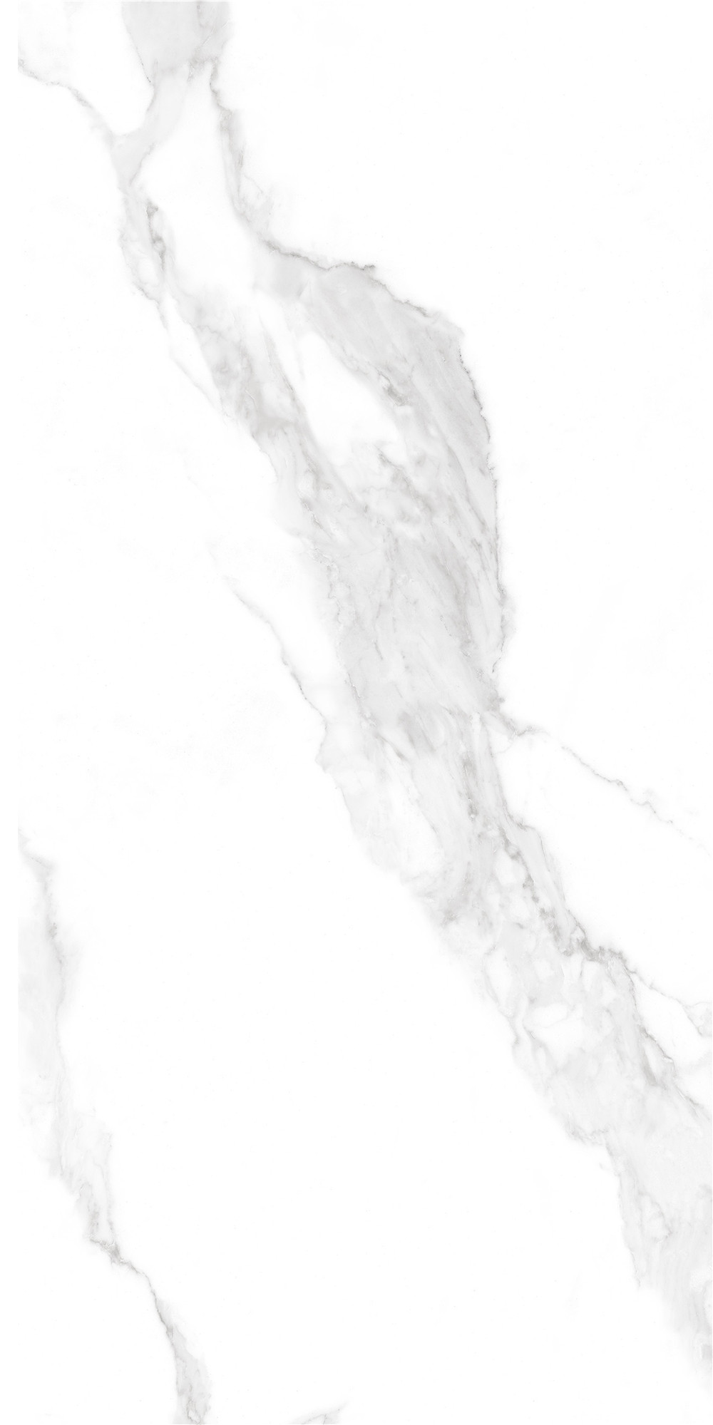 YTB12023安特克拉白