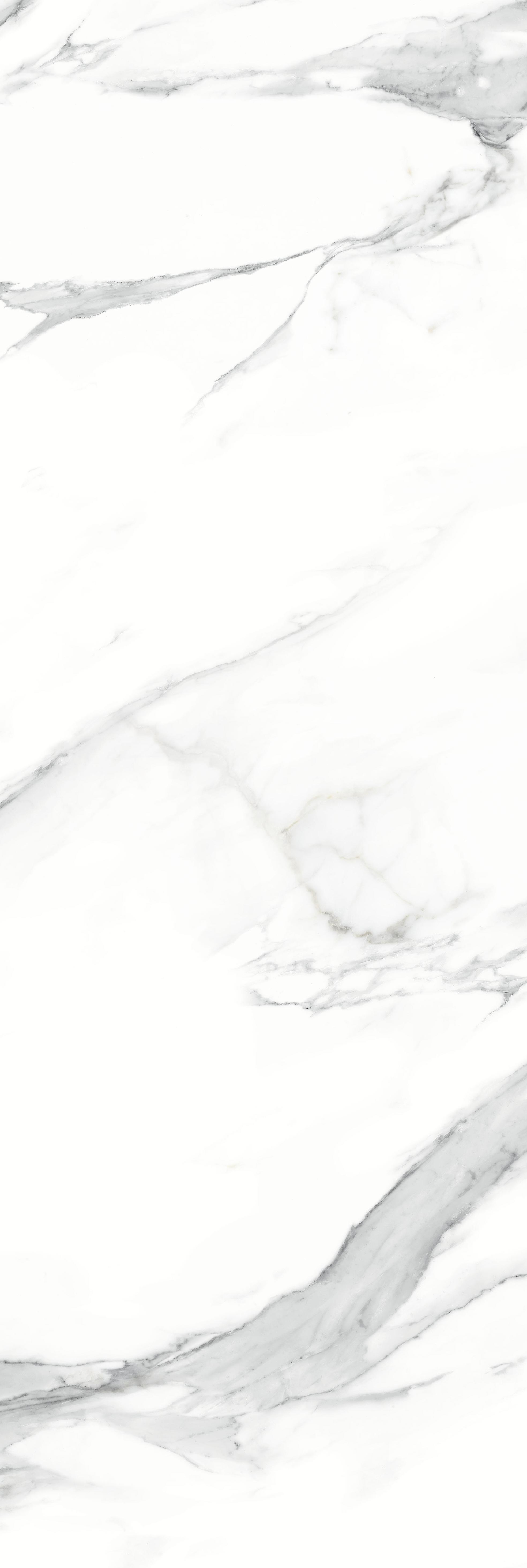 HJ260902暮雪白