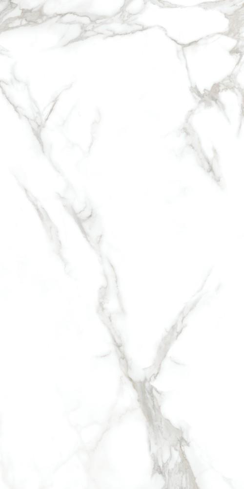 ZC715X10-奈高斯白