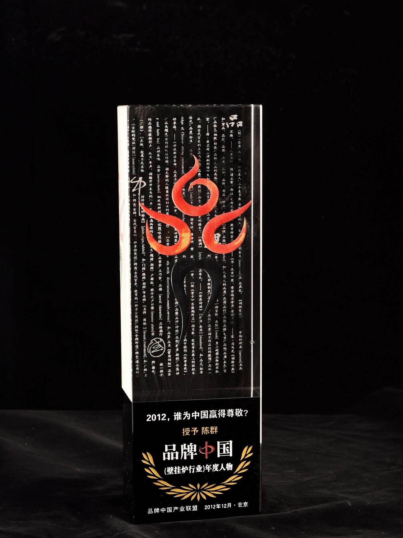 品牌中国(壁挂炉行业)年度人物