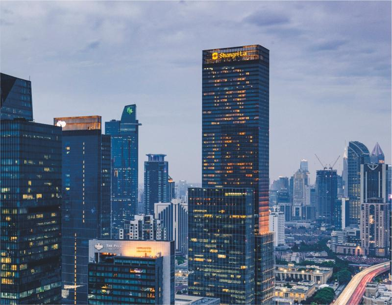 上海香格里拉大酒店家用燃气壁挂炉应用案例效果