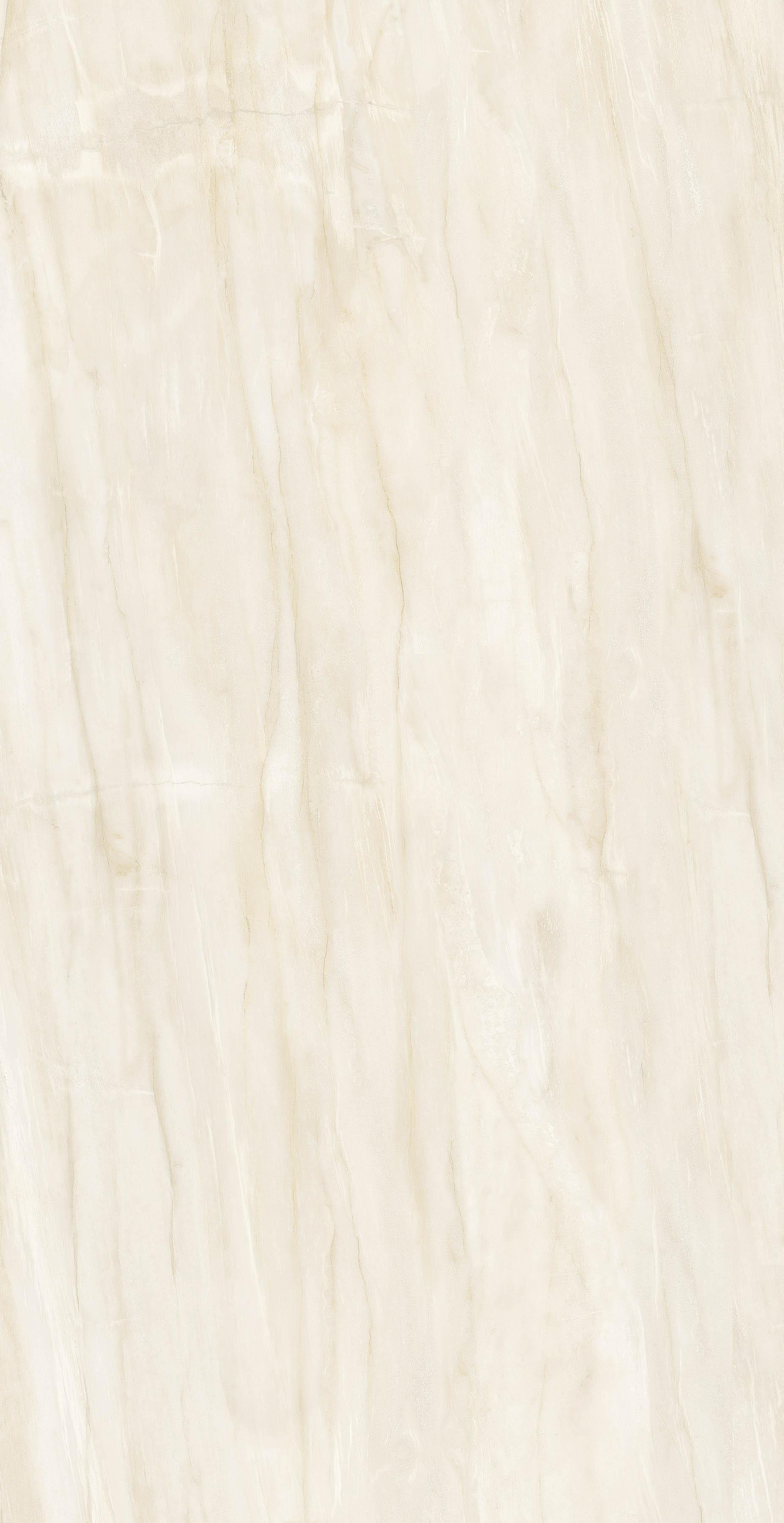 FB18018 木化石