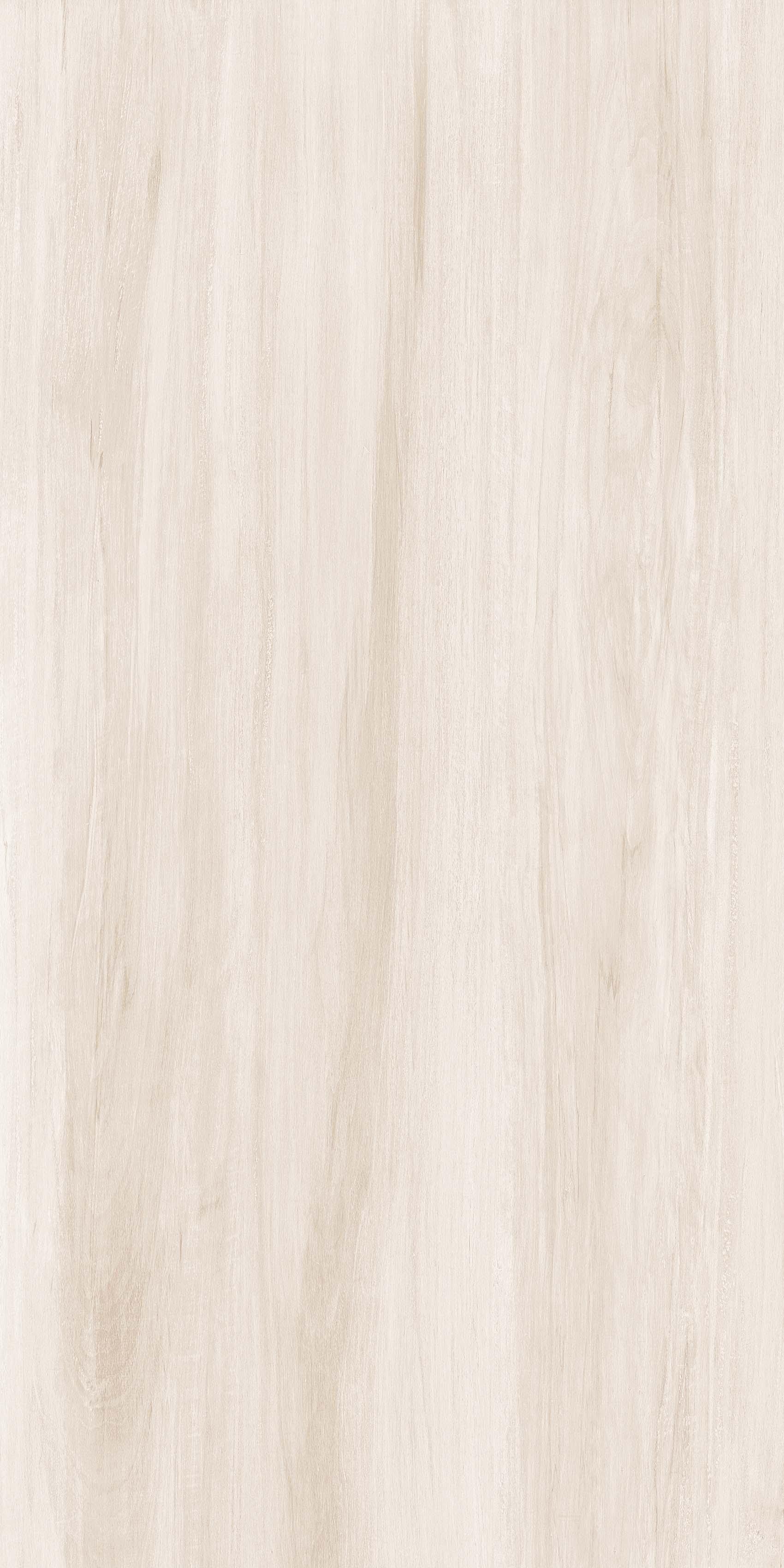 OFTD15010 薄暮森林