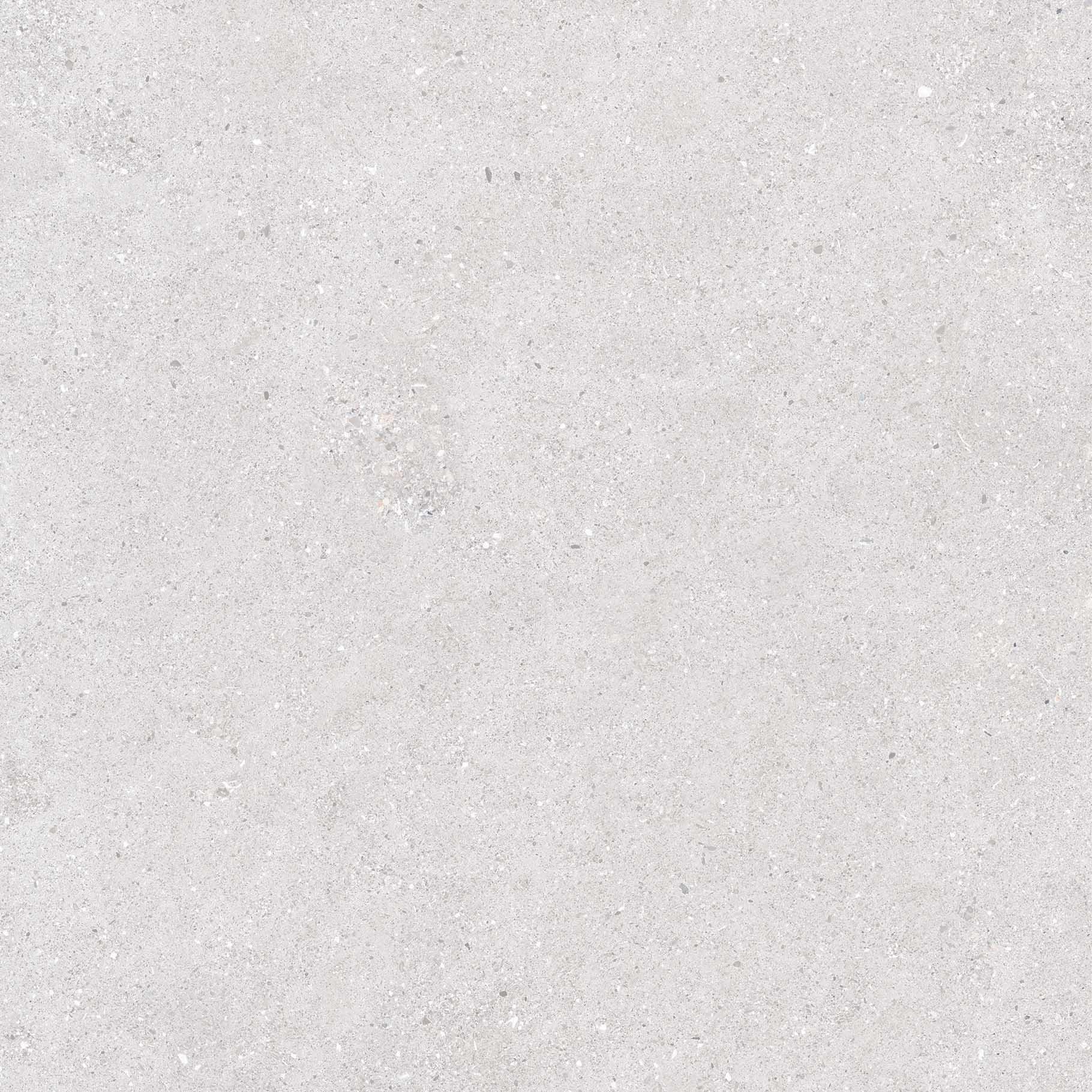 FTS80093 石韻