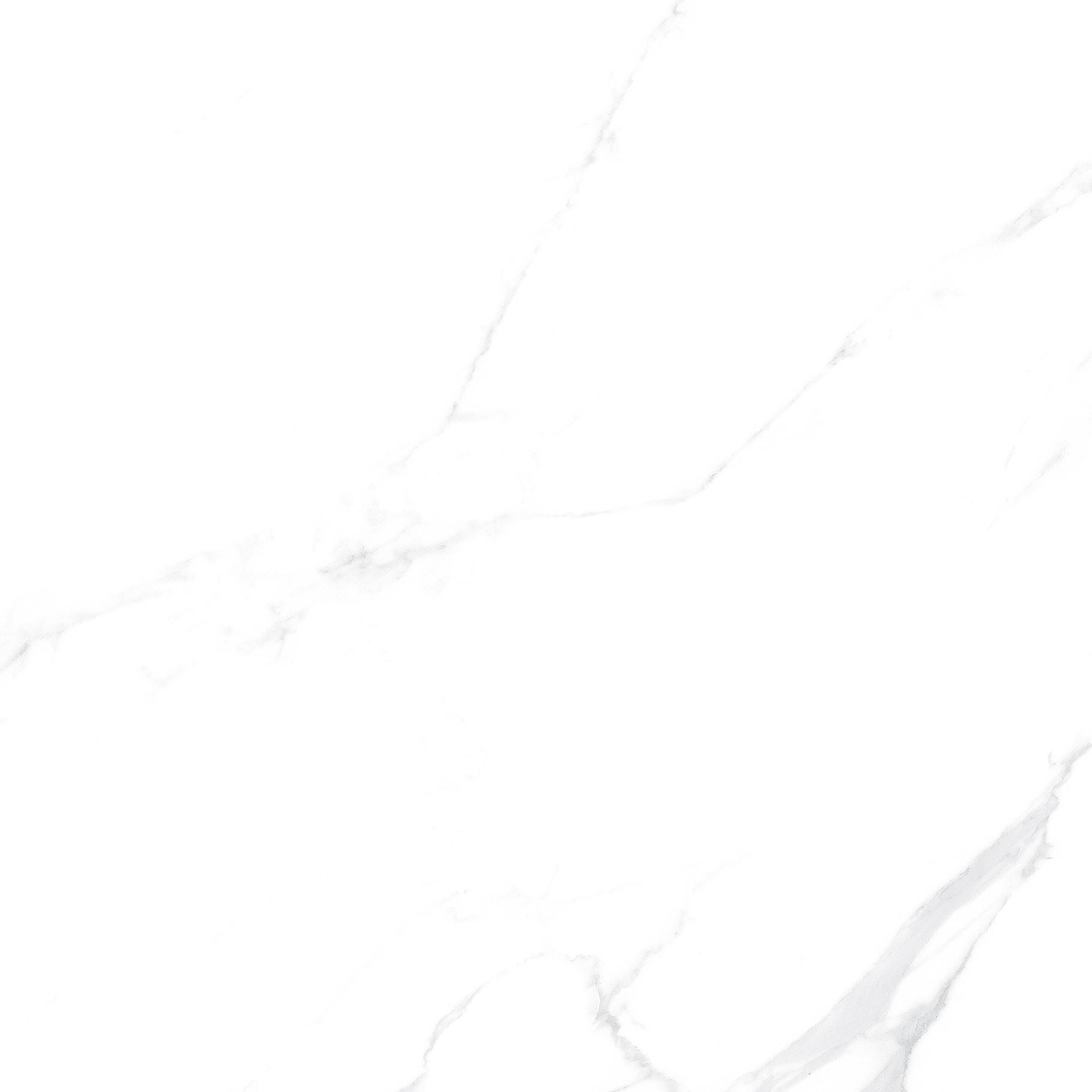 OFTT82999 银河白