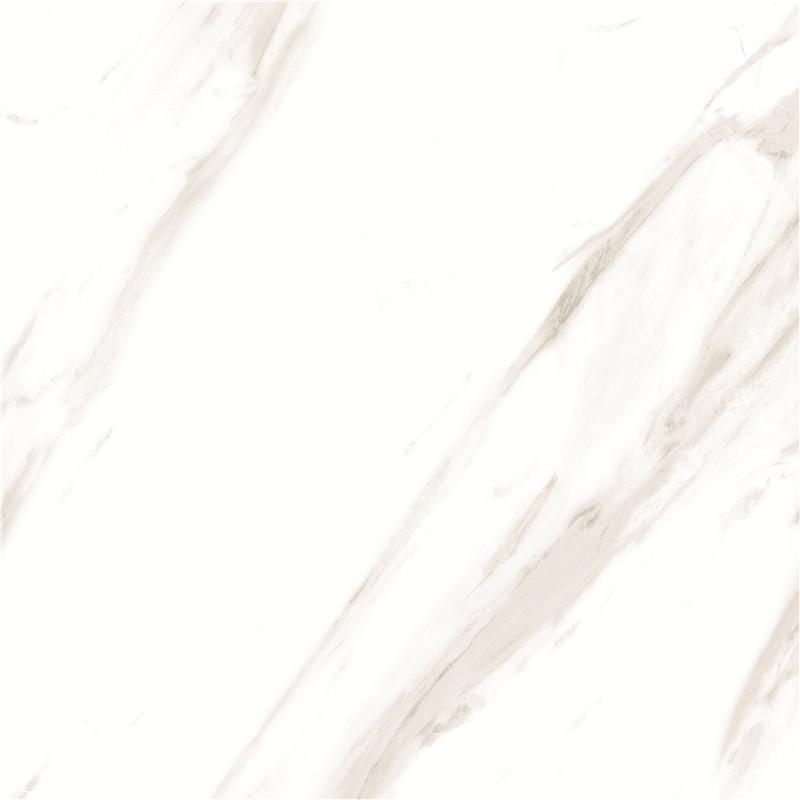 OFP80015Y  卡拉拉