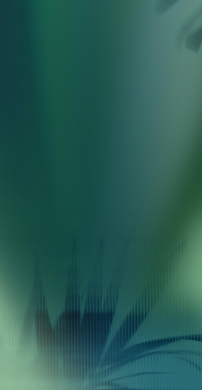 HJ9L2412018森影韶光(亮光,3片连纹)
