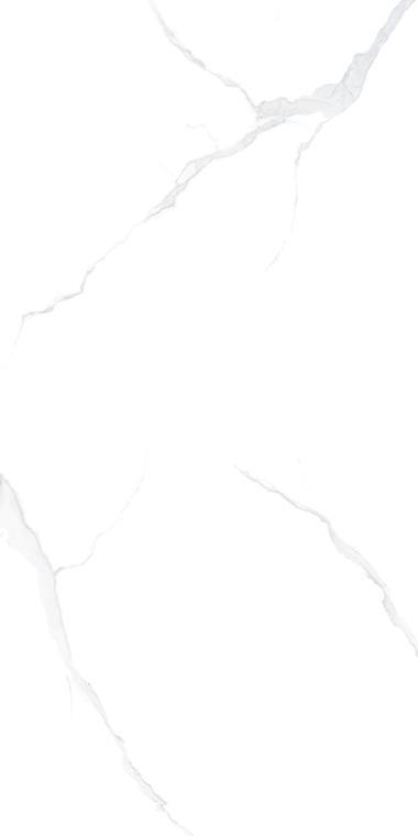 SV-1L189003鱼肚白