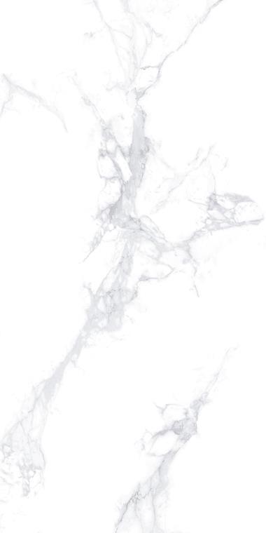 SV-1L189006大花白