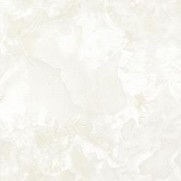 D2SA60224