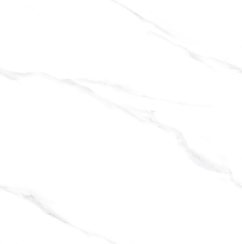 SV-1TL87907冰清玉洁