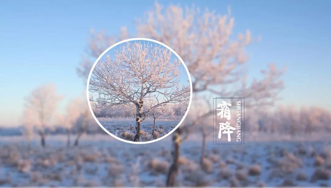 升华陶瓷 | 今日霜降,天愈寒,莫忘加衣!