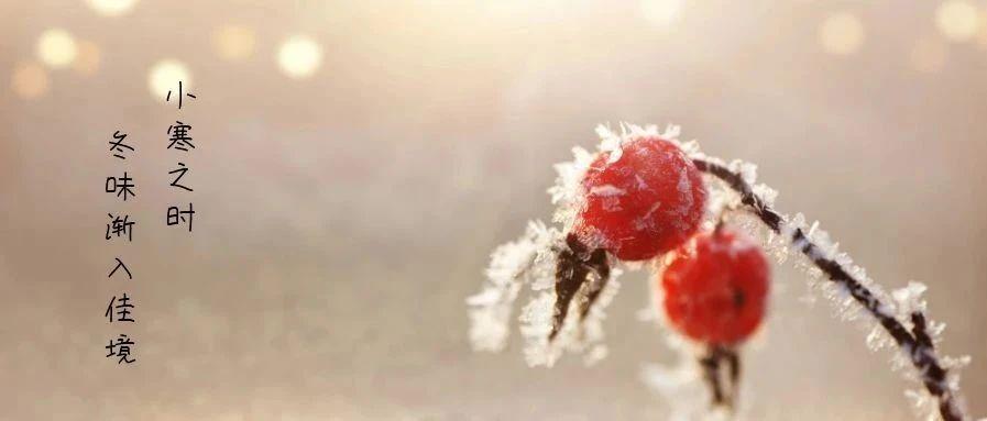 升华陶瓷 | 小寒时节,愿温暖与您相伴!