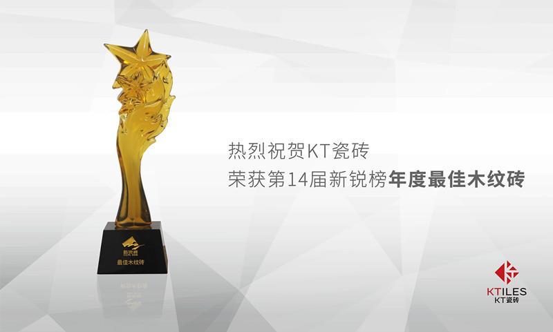 第14届新锐榜 年度最佳木纹砖
