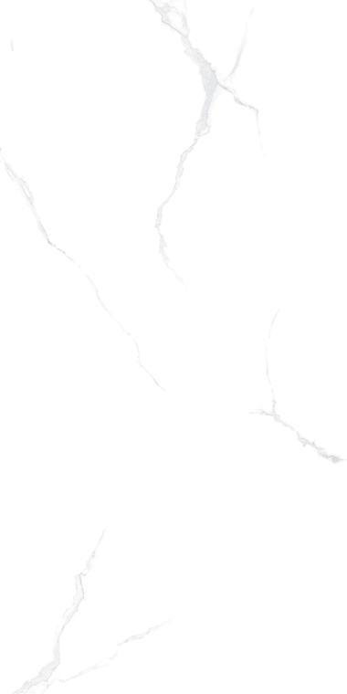 WH-1L189003鱼肚白