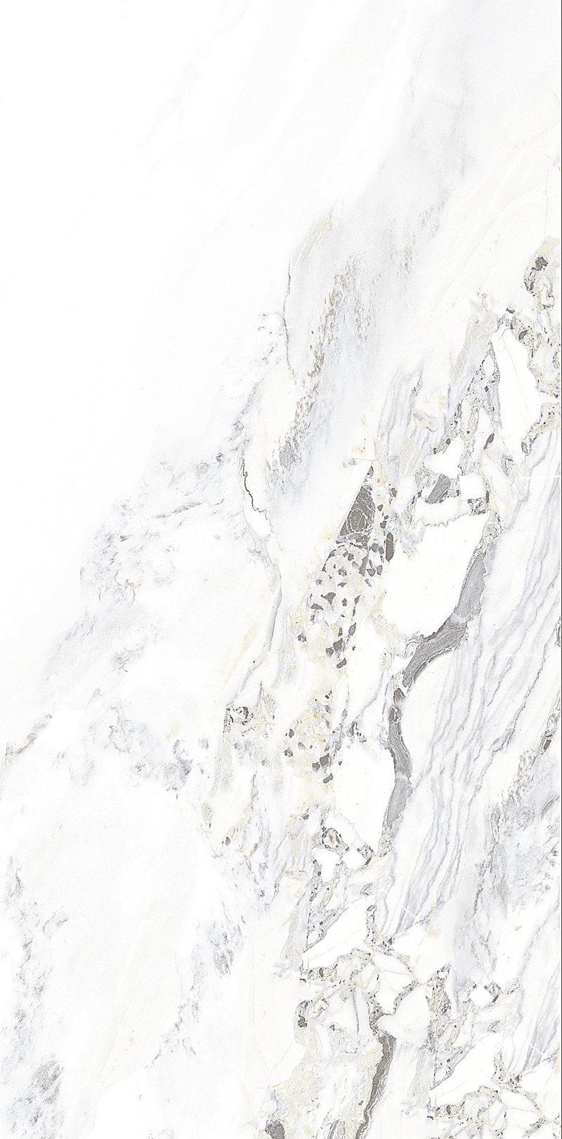 WH-1T126755